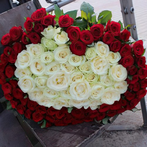 101 троянда серце фото