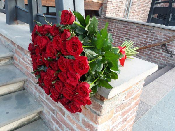 51 krasnaya roza