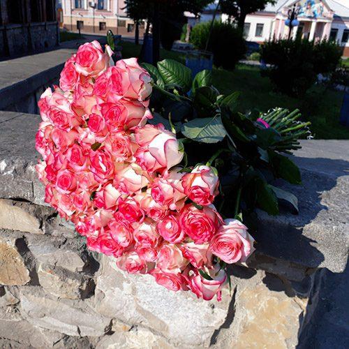 """фото 51 троянда """"Джумілія"""""""