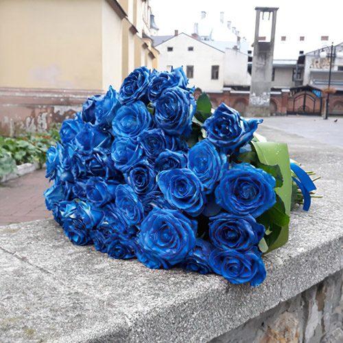 фото 33 сині троянди