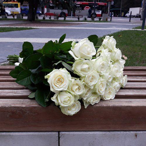 фото 21 біла троянда