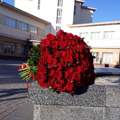 101 червона троянда фото