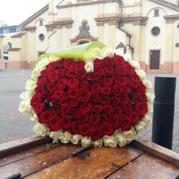 101 троянда серце із білим ободком