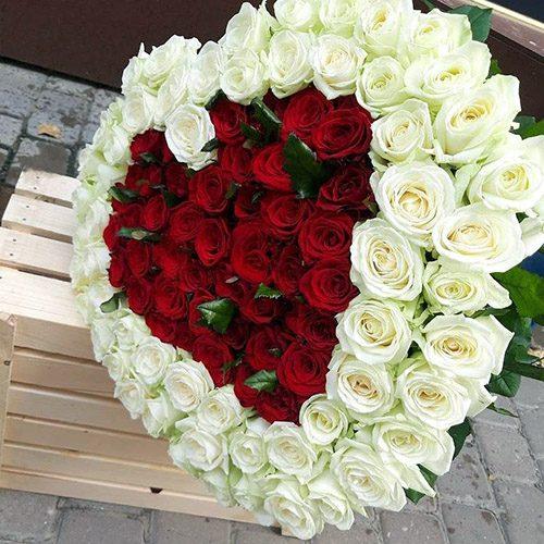 Фото товару 101 троянда серце із білим ободком
