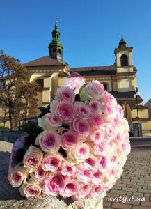 троянди в Івано-Франківську