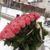 як замовити квіти Івано-Франківськ