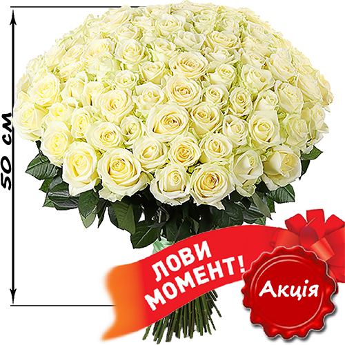 101_white_roses-1.png