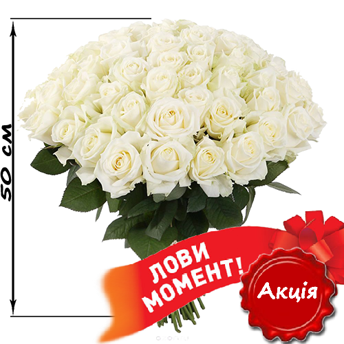 51_white_roses-1.png