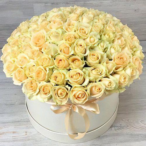 картинка 101 кремова троянда в капелюшній коробці
