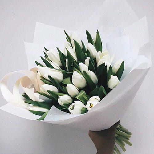букет 25 білих тюльпанів