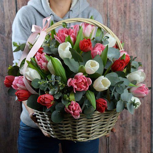 букет 25 тюльпанів асорті в кошику