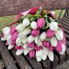 букет 49 білих та рожевих тюльпанів