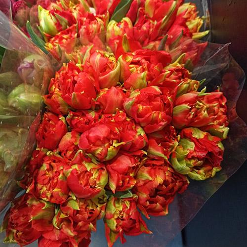 Квіти на 8 березня тюльпани