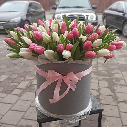 101 тюльпан в коробці (біло-рожевий) фото товару
