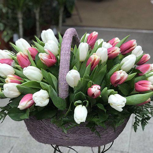 51 біло-рожевий тюльпан у кошику фото букета