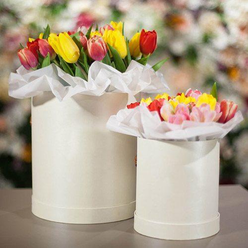 """Подарунок """"Два сузір'я"""" тюльпани в коробках"""