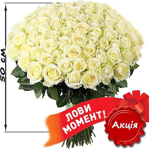 Фото товару 101 біла троянда (50 см)