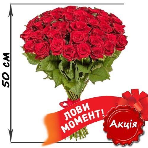 Фото товару 51 червона троянда (50см)