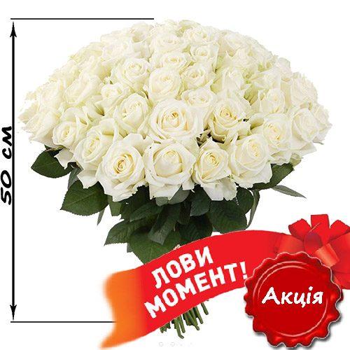 Фото товару 51 біла троянда (50 см)
